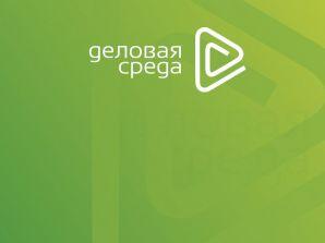 Вебинар Анны Кулик для предпринимателей Челябинской области